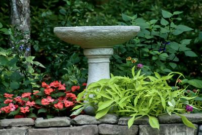LIFE-HOME-ONGARDENING-1-MCT062920