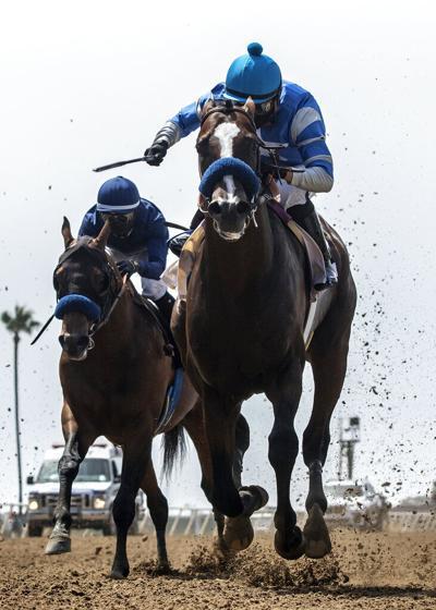 Del Mar Horse Racing 1