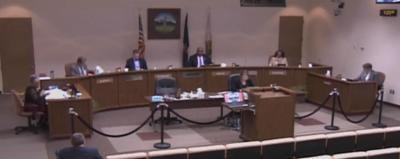 screen grab city council 031620