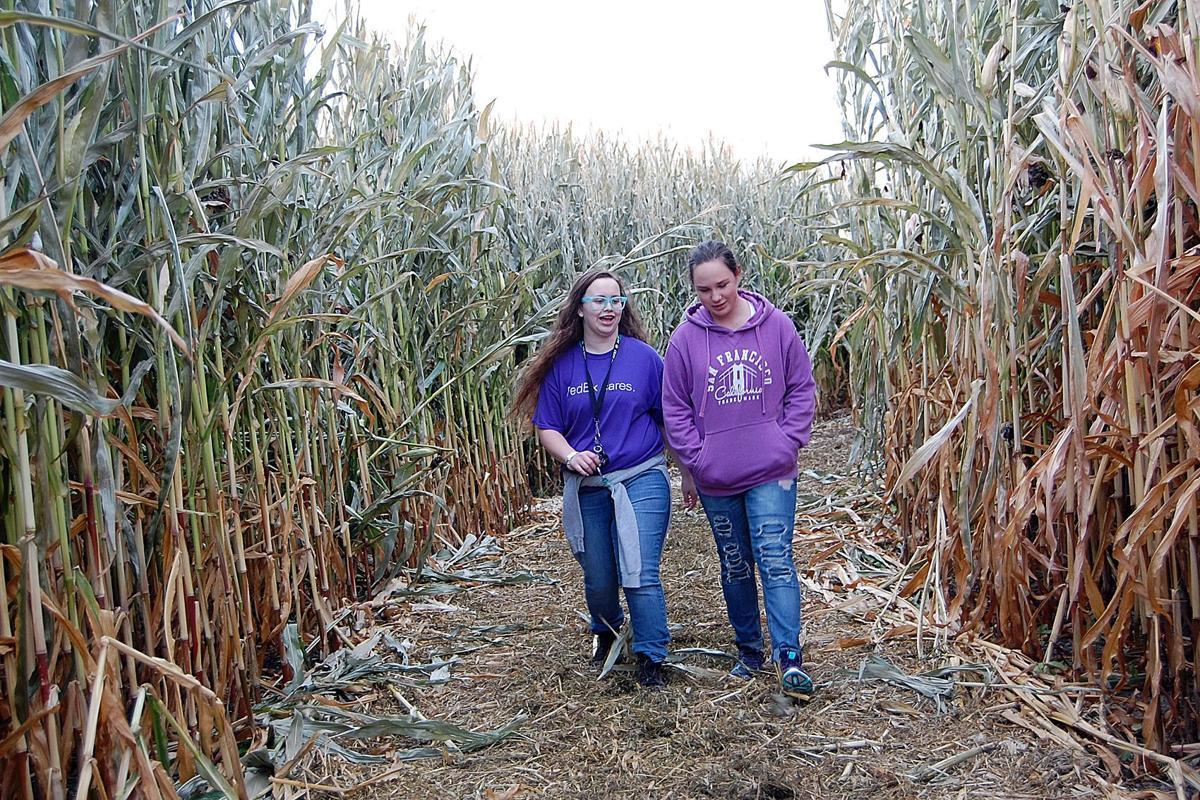 Echo Corn Maze