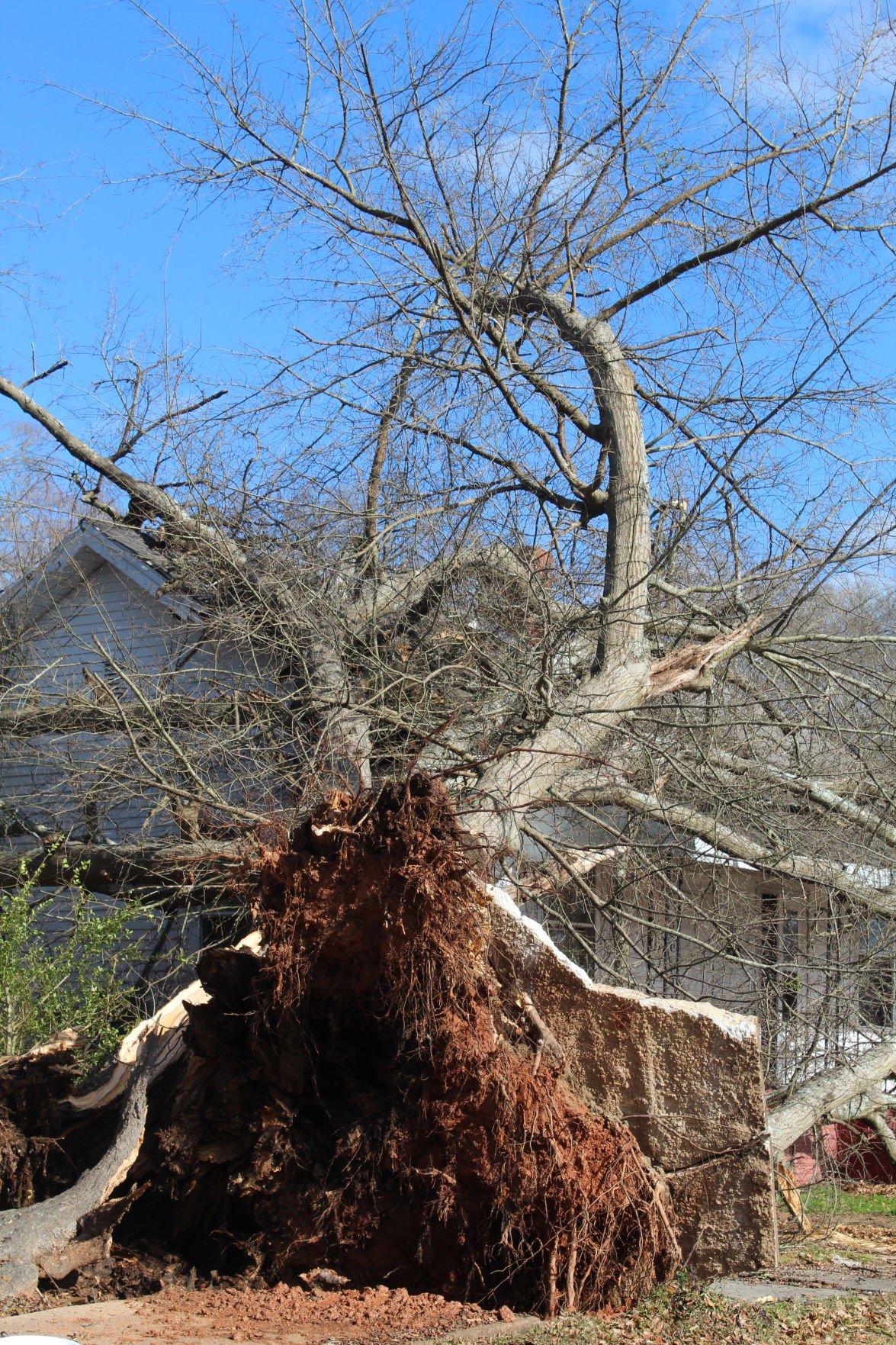 Southern part of Laurens County bears brunt of storms   GoClinton.com    golaurens.com