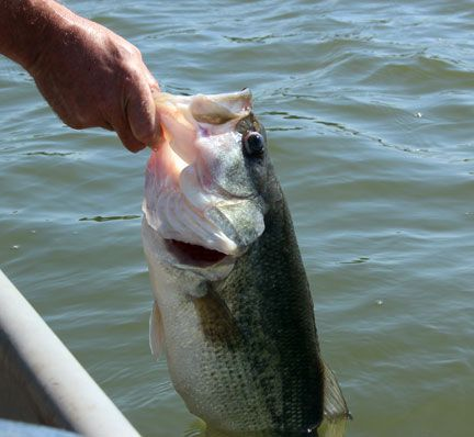 Good Shepherd Medical Clinic to host bass fishing tournament