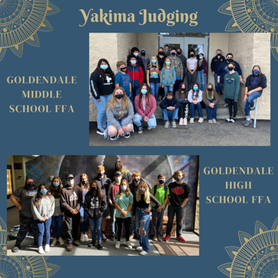 FFA Judging