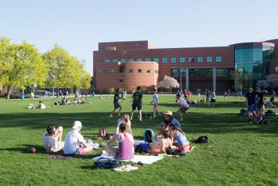 GU campus, sunny at last