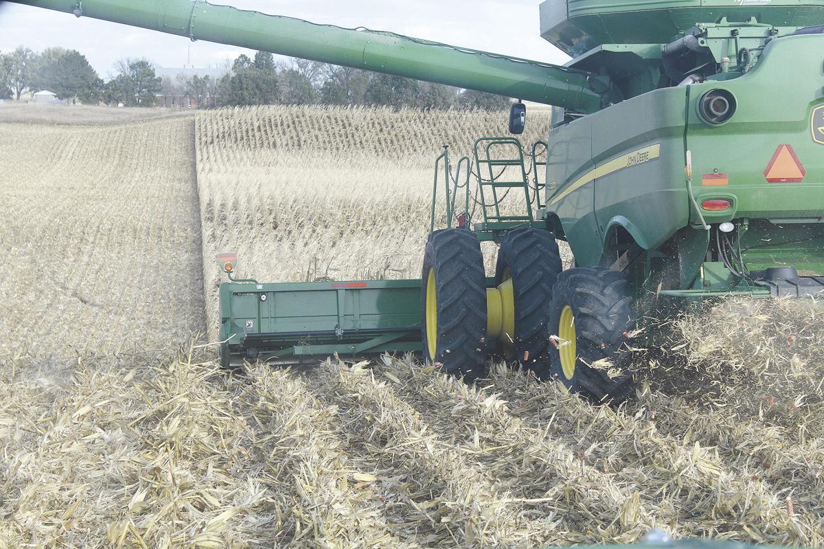 6-Harvest.JPG