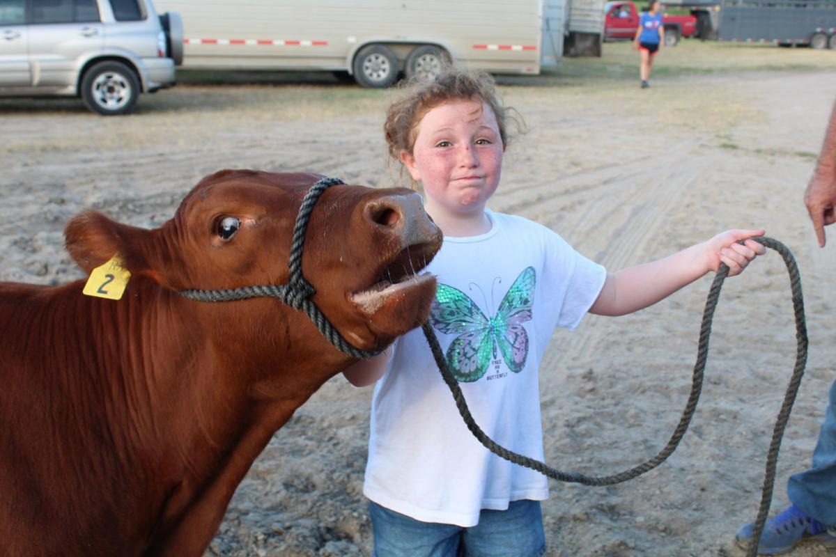 County Fair means ribbons, rides and rodeo | News
