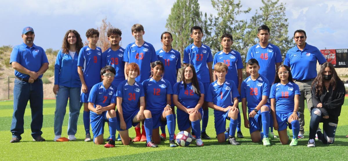 Soccer V Silver 1