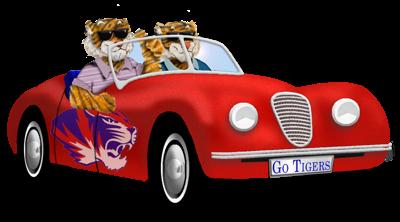Tigers In Car