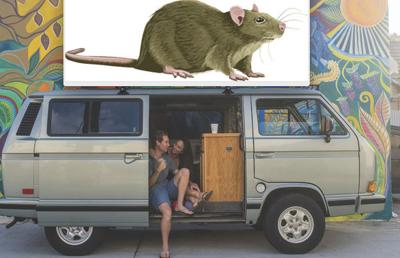 Odd News: Woman living in van gives up all 300 of her rats