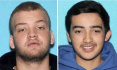 One hit-and-run suspect in custody; other suspect at large