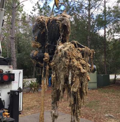 1 Municipalities offer wipes warning