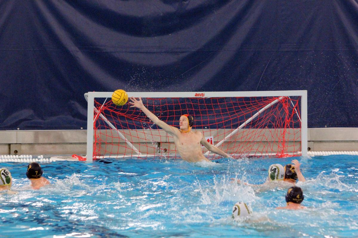 Havel Polo headed to consolation tourney