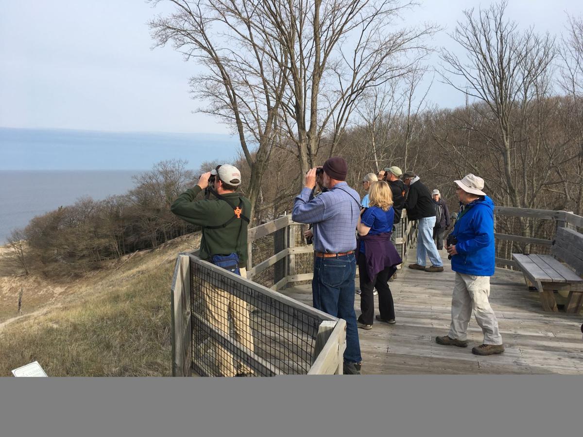 Storm boosts bird watching at shoreline park