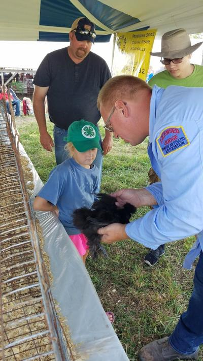 Platte County Fair