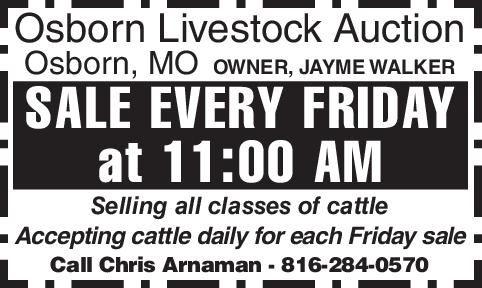 Osborn Livestock Auction- 6592296