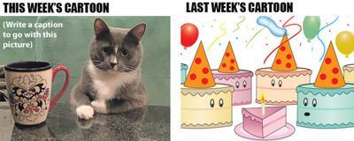 jou_coffee-cat_cake-party_080219