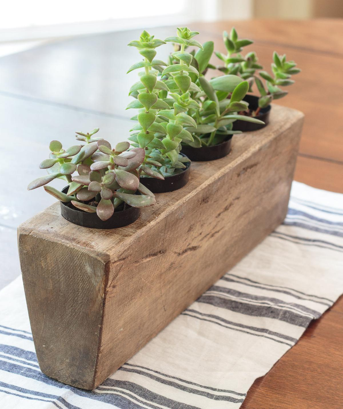 Upcycling Almost Anything Can Become Planting Container For