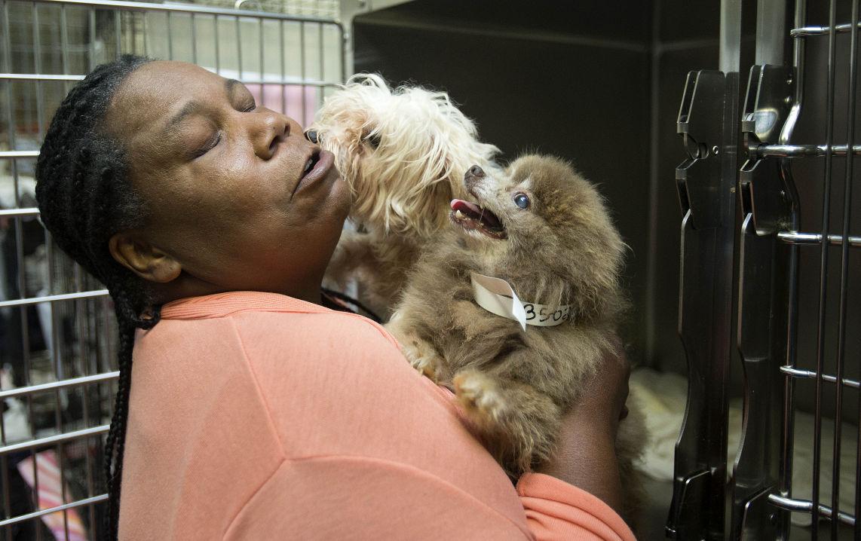 Marsha Williams, Guilford County Animal Shelter