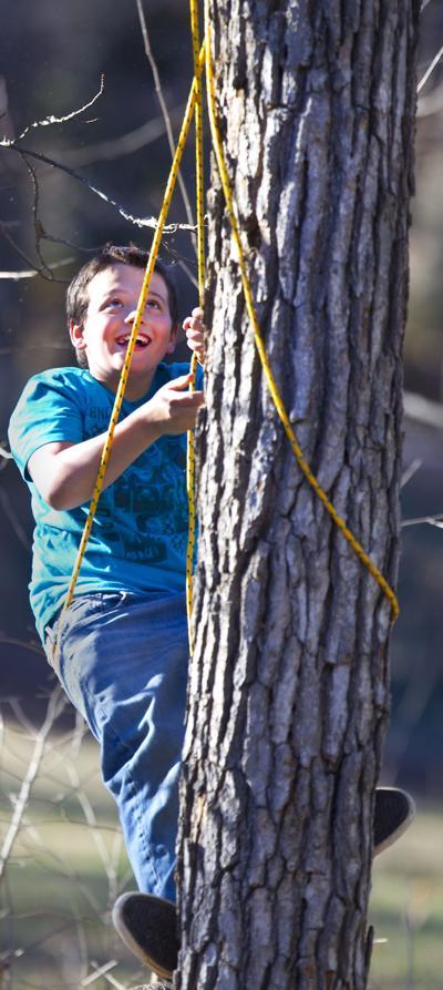 tree_climbing_solo__