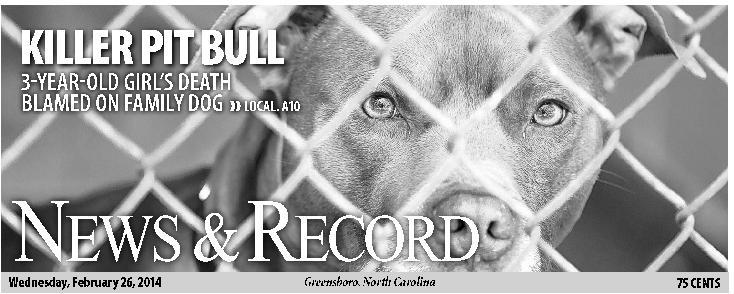 'Killer pit bull'debate a part of newspapering