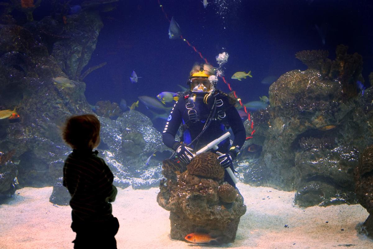 science center diver.jpg