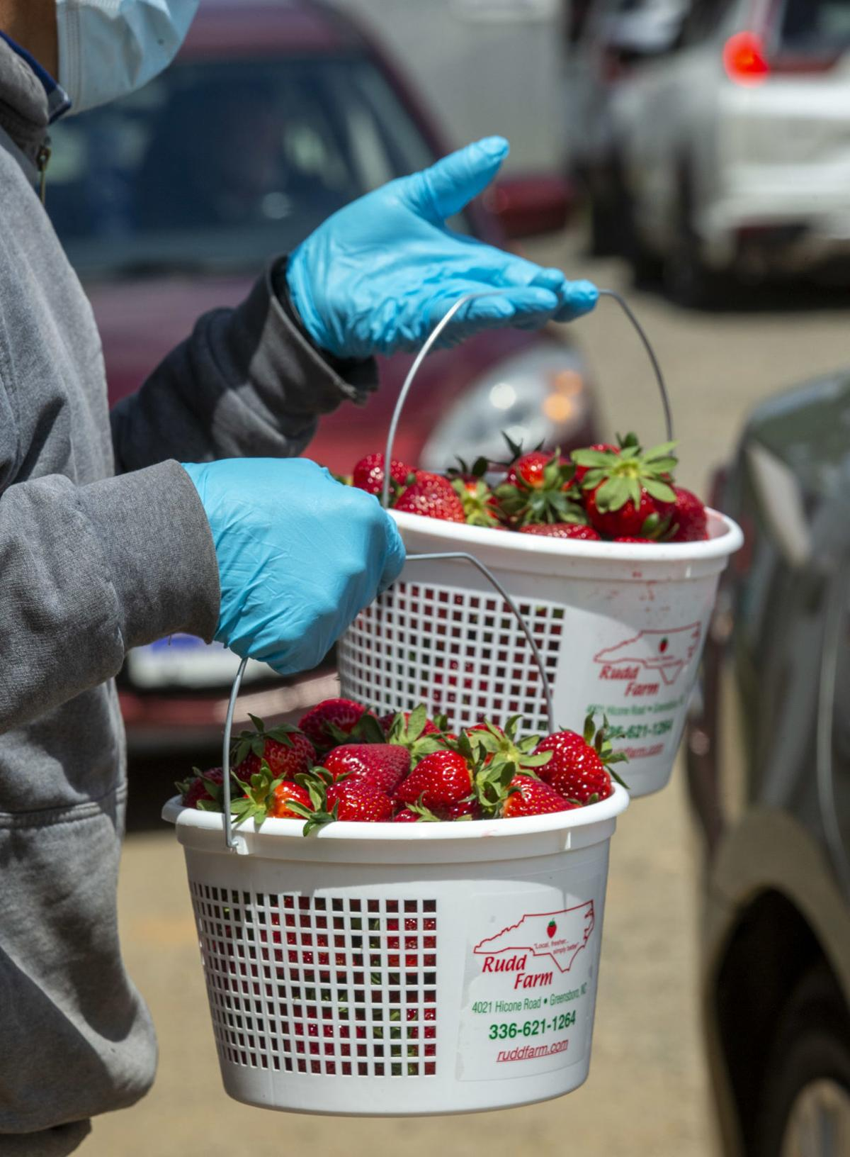 Berried Treasure For Greensboro Residents Strawberry Season Is Their Jam Pandemic Or Not Local News Greensboro Com