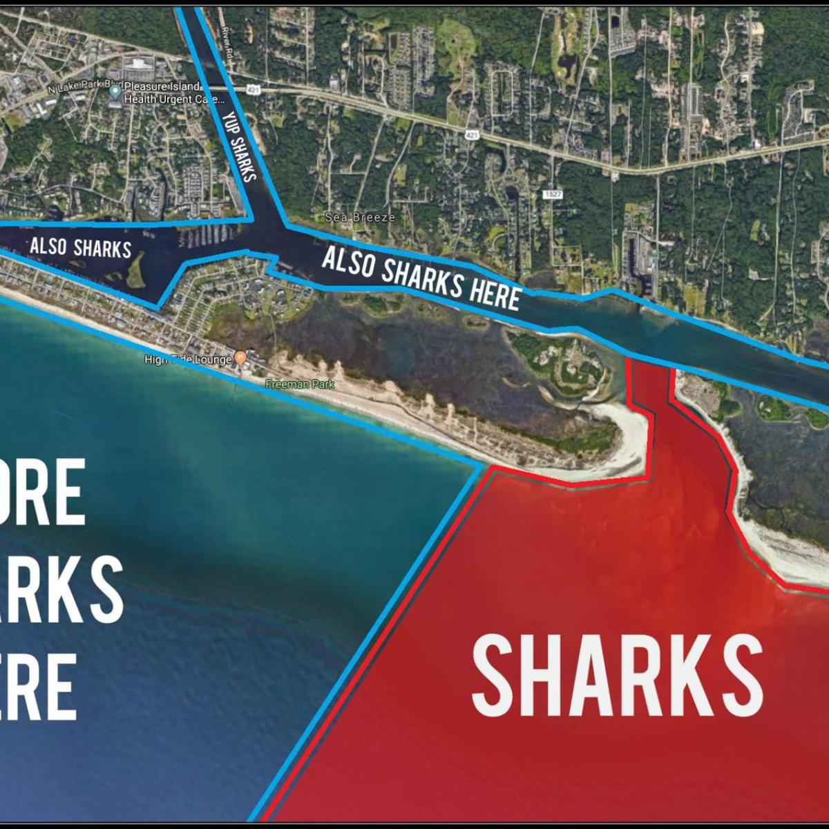 Shark mystery solved: New map shows exactly where sharks are ... on map of memphis tn, map of salemburg nc, map of hog island nc, map of asheville nc, map of griffin nc, map of charlottesville nc, map of biltmore forest nc, map of columbus ga, map of charlotte nc, map of orange co nc, map of ogden nc, map of raleigh nc, map of north carolina, map of bunnlevel nc, map of greenville nc, map of clarksville nc, map of moyock nc, map of saxapahaw nc, map of ferguson nc, map of atlanta,