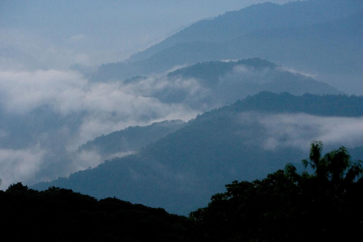 SMOKY MOUNTAINS (copy)