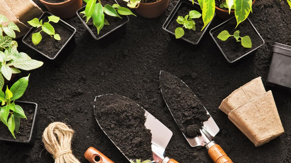 The best tools and essentials to get you planting this spring