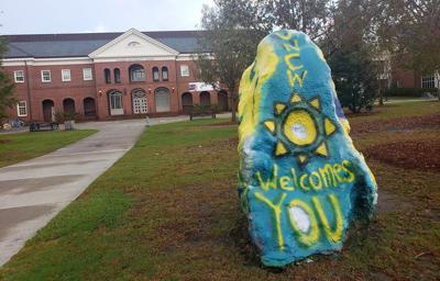 UNC-Wilmington rock
