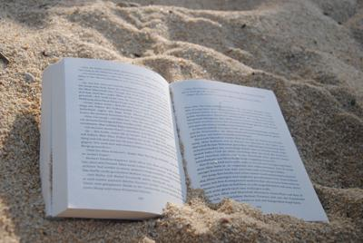 Beach book generic