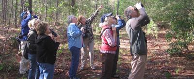 Piedmont Bird Club in its 80th year