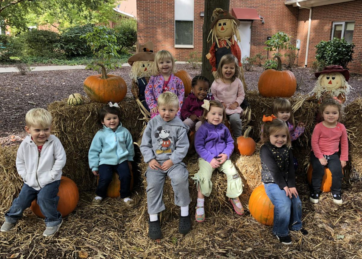 Toddlers in the pumpkin patch