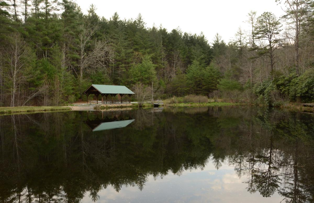 DuPont Forest (copy)