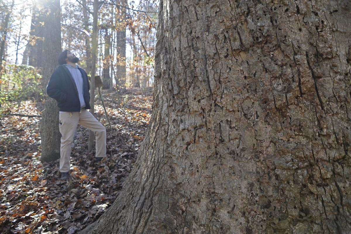 Sustainable-trail building class at Guilford College