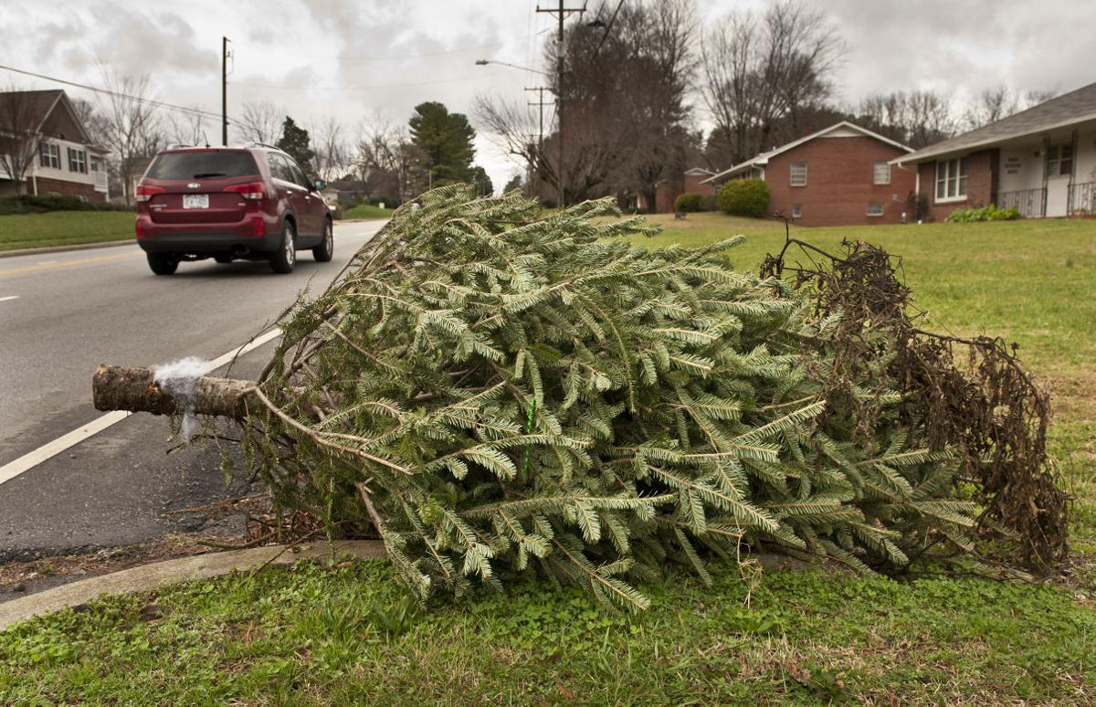 How to get rid of your Christmas tree | News | greensboro.com