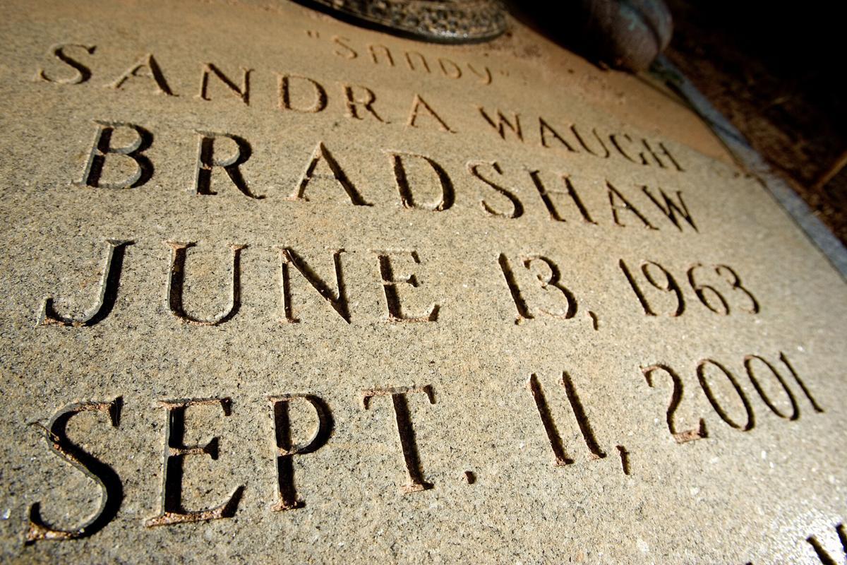 bradshaw 080306