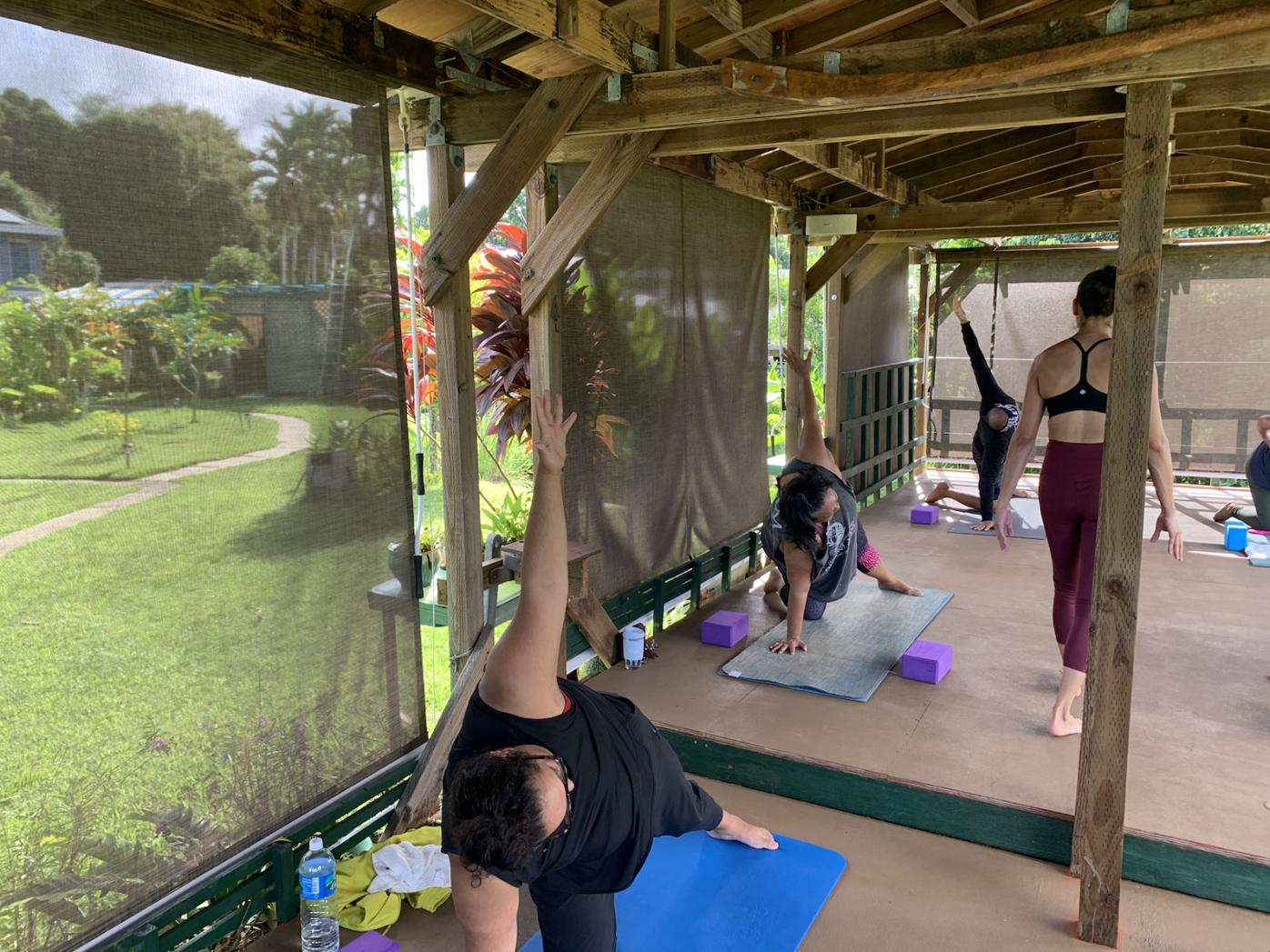 Yoga in Paradise: The Yoga Garden