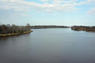 Altamaha_River_from_bridge.jpg