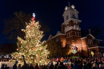 Annual Lighting Of The Tree Event Draws