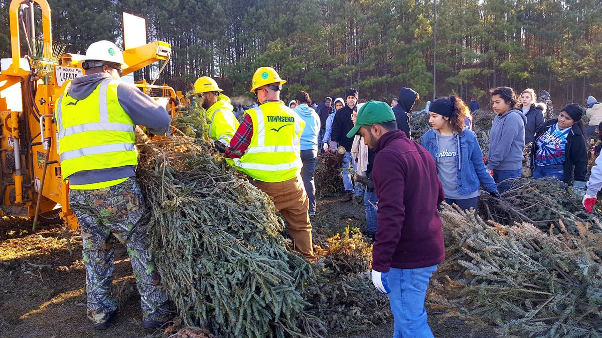 Gwinnett residents asked to drop off Christmas trees for recycling