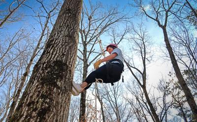 GGC Arbor Day 2020climb 1.jpg