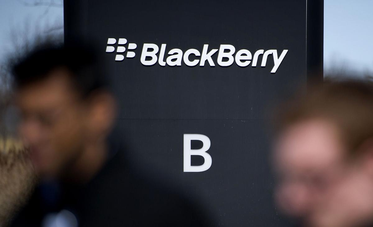 The Blackberry Is Coming Back Business Gwinnettdailypost Com