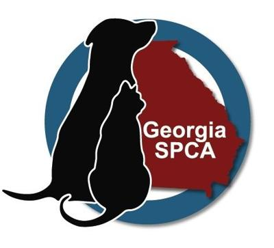 Georgia SPCA Offers Public Low Cost Vaccination Clinic