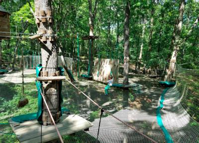 Treetop Quest Gwinnett
