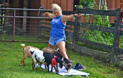 A national craze, goat yoga has made its way to one local farm