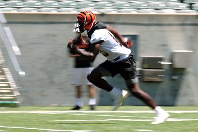 NFL: Cincinnati Bengals-Minicamp