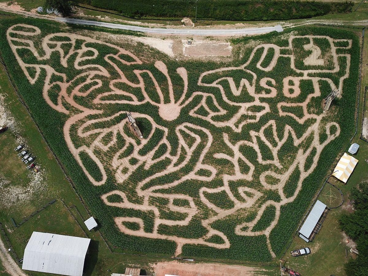 Corn Maze overhead 2019 - smaller.jpg