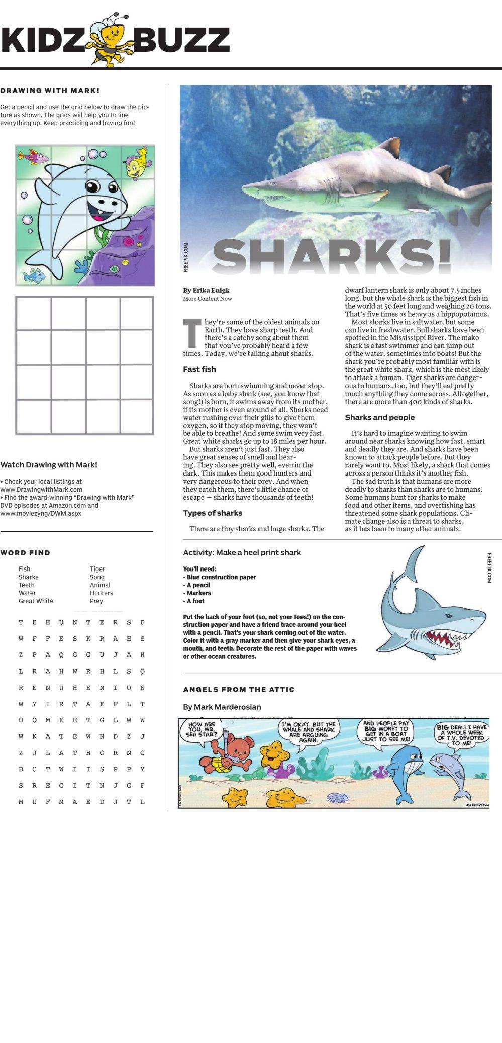 Kids Buzz - Sharks