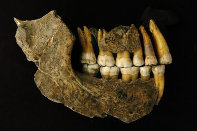 Neanderthals disappeared from Europe thousands of years earlier than we thought